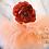 Thumbnail: Ready to Ship Peach Newborn Tutu Set -0003