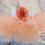Thumbnail: Ready to Ship Peach Newborn Tutu Set -0007