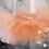 Thumbnail: Peach Tutu