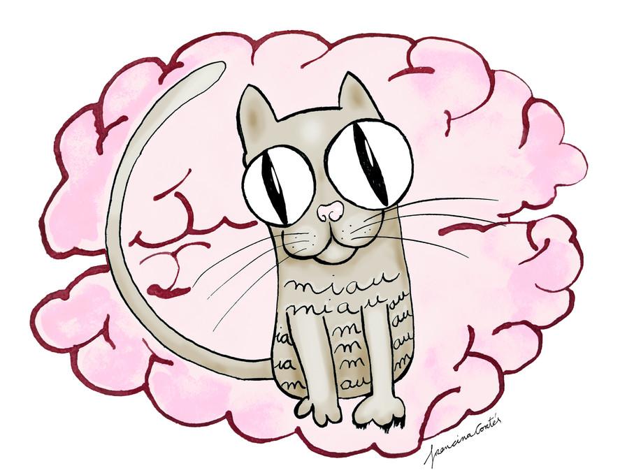 'Se ha colado un gato en mi cabeza'