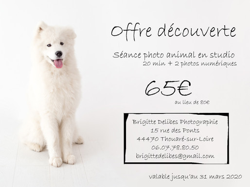 Offre Promotionnelle - Séance photo animal au studio