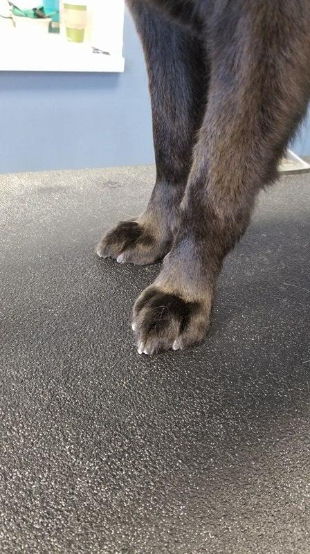 No more grinch feet!