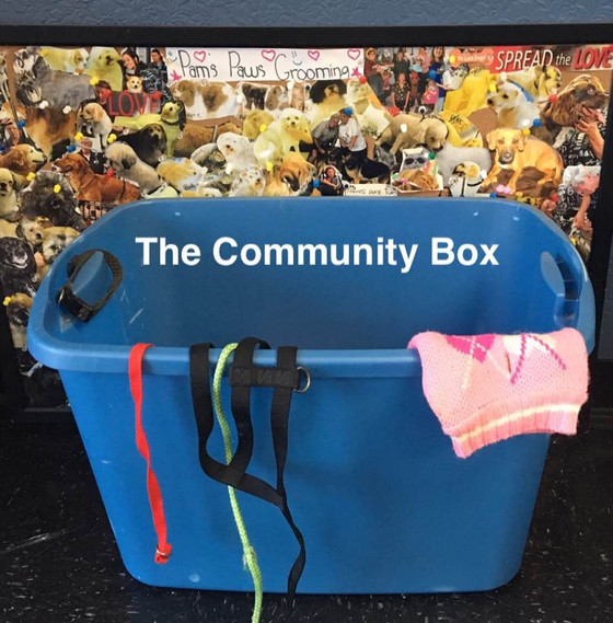 The Community Box