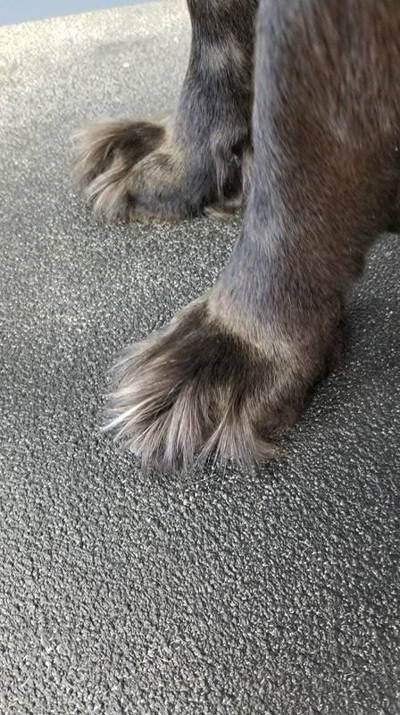 Grinch feet!