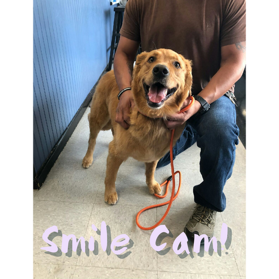 July Smile Cam(s)!!!