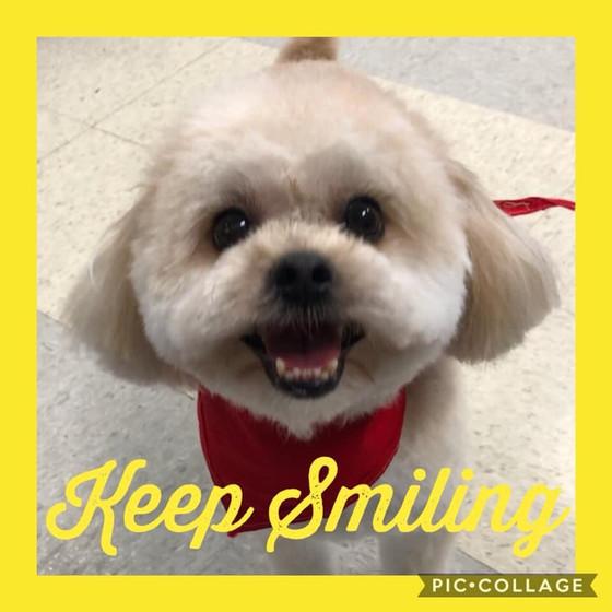 Smile Cam!