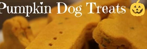 October Healthy Bites  -  Halloween Doggy Treats