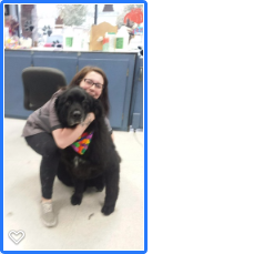 Erin and Mishka our Newfoundland girl!!!