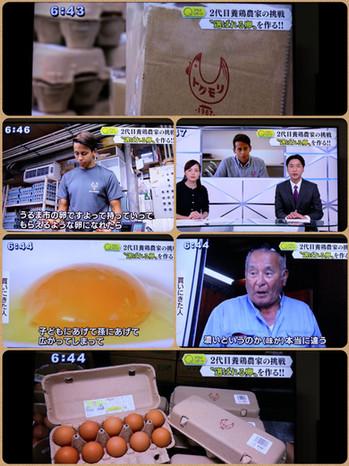 徳森養鶏場メディア出演05.jpg