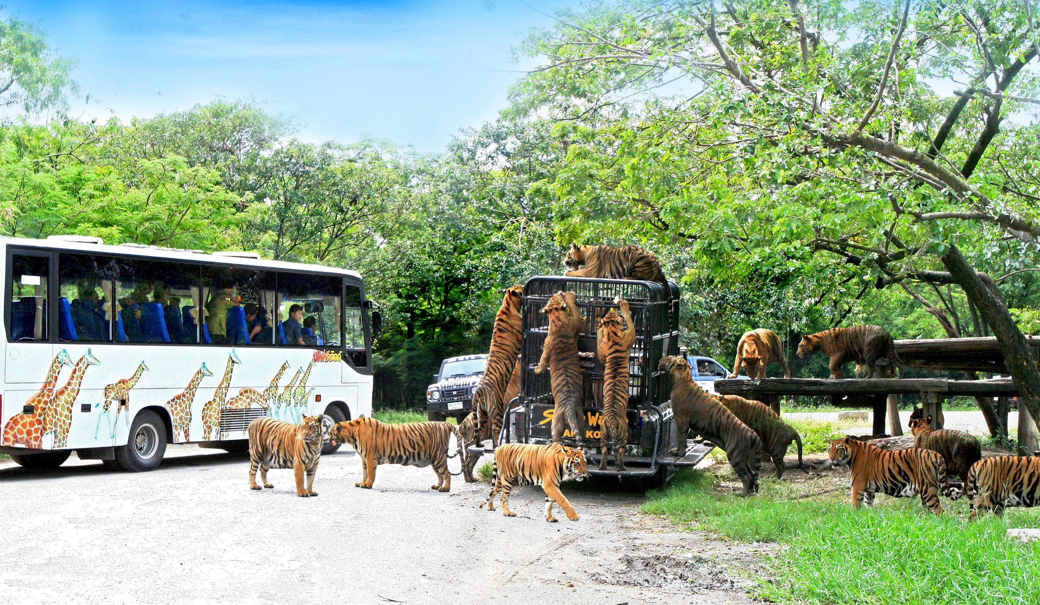 Safari World_05