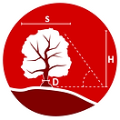 Tree_Surveys_Image.png