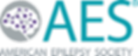 AES-full-color-full-name (1).png