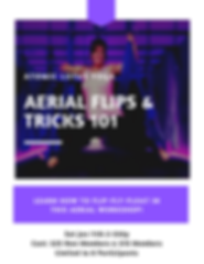 Aerial Flips & Tricks 101.png