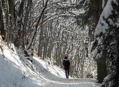 La méditation, une belle pratique hivernale