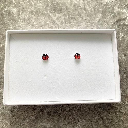 Sterling silver ladybug studs
