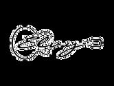 logo-elvy.png
