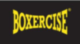 boxercise2.jpg