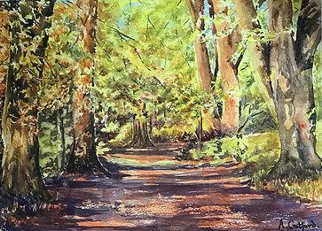2 Savernake Forest IMG_5358.jpeg