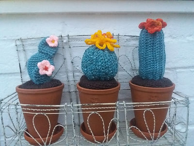 200608 Linda Robson knitted cactus.jpg