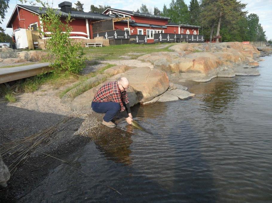 Fiske i Sunnanöviken