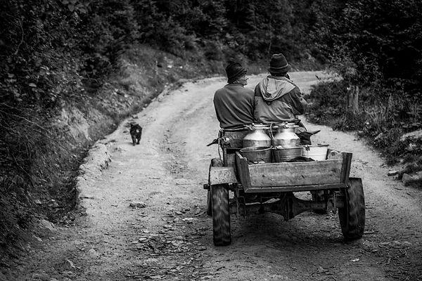 Shepherds_Krystian_Bielatowicz-04339.jpg