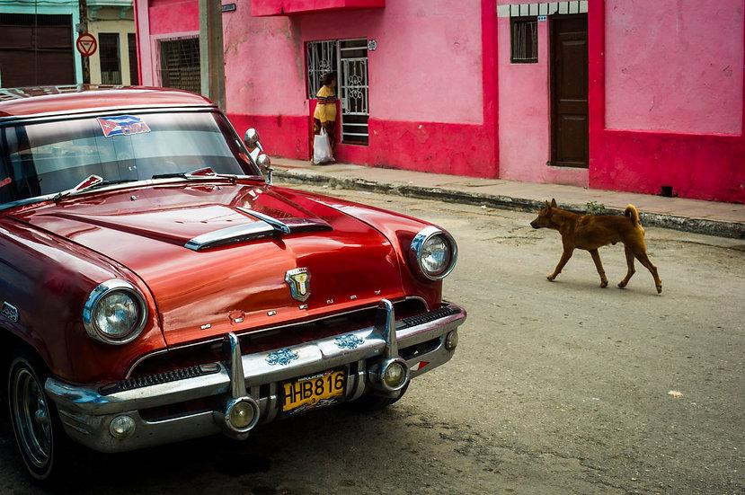 Cuba #15