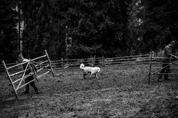 Pasterze-2097.jpg