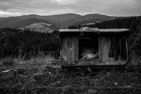 Pasterze-7368.jpg