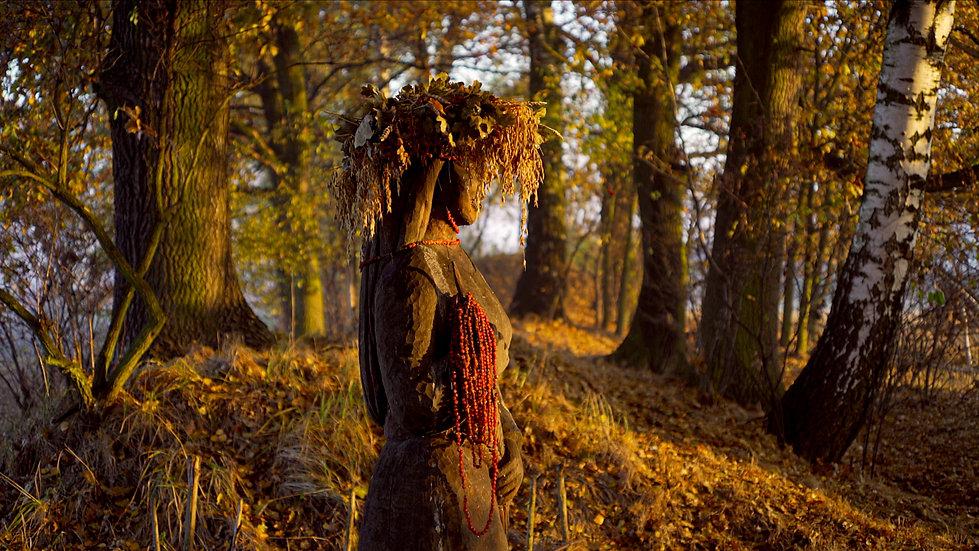 Roots_Bielatowicz-01-2.jpg