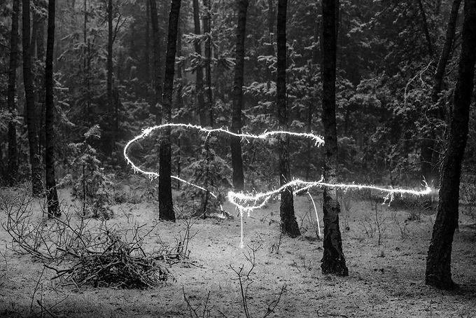 Przebudzenie-7311.jpg