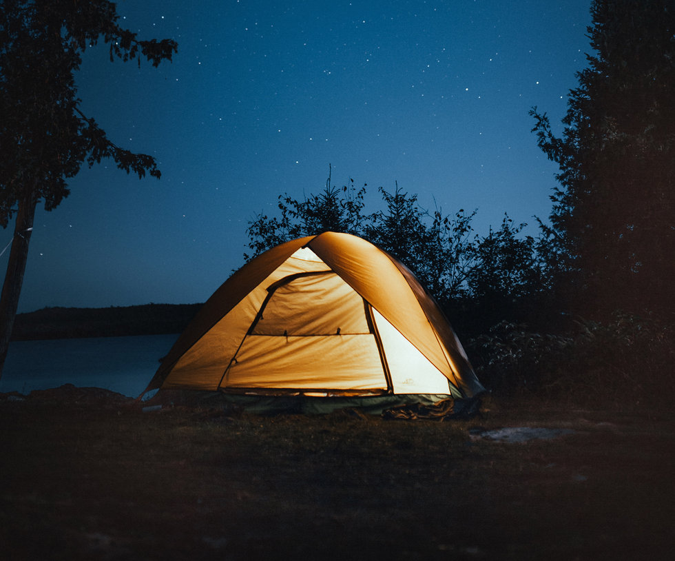 vertical-shot-camping-tent-near-trees-du