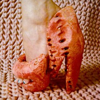 Sylvia-Simpson-foot008