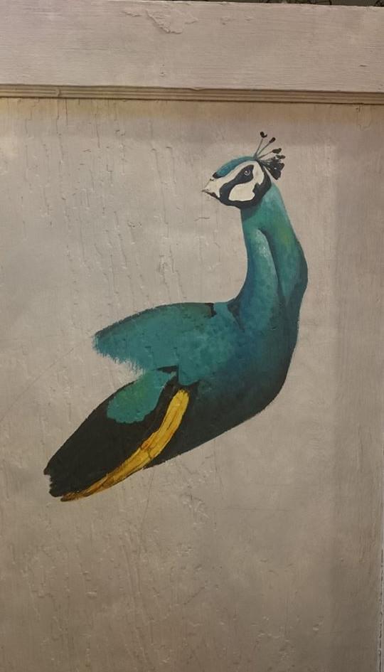 Peacock WIP.jpg