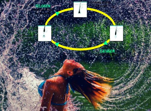 Hair Growth Cycle.