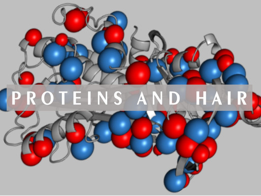 Proteins and hair.                                   (why too much is not good!)