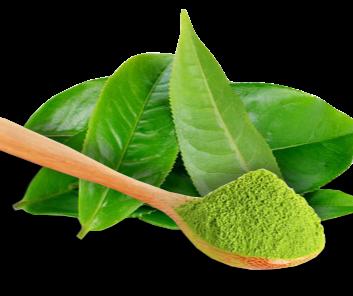 Matcha Tea MSM (Organic Sulphur) Conditioner Bar