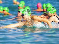 2020 Christmas 10k & 1 Lap Cruiser Swim Results