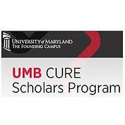 UMD Cure File.jpg