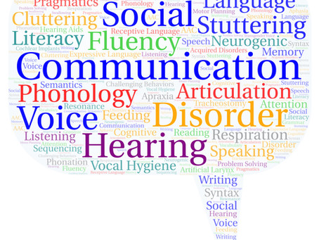 Five Common Misconceptions about Speech-Language Therapy