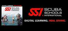 SSI Online Training