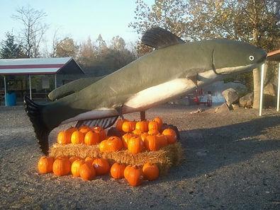 Underwater Pumpkin Carving