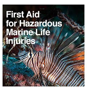 Hazardous Marine Life Injuries