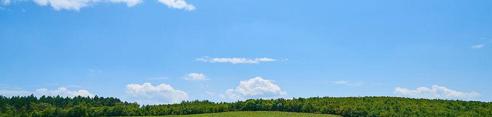 landscape-3624968_1920.jpg