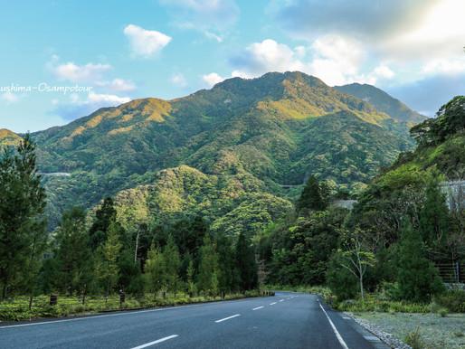 羽神岳の新緑♪