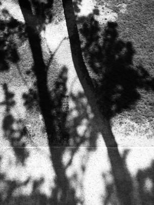 ALLURE-Tino-Sand-21.jpg