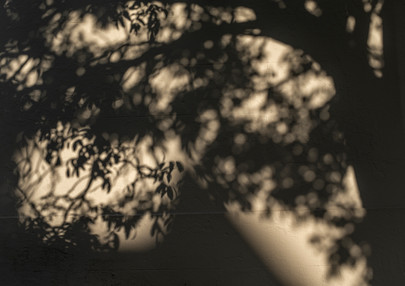 TINO-SAND-Transient Shadows-14.jpg
