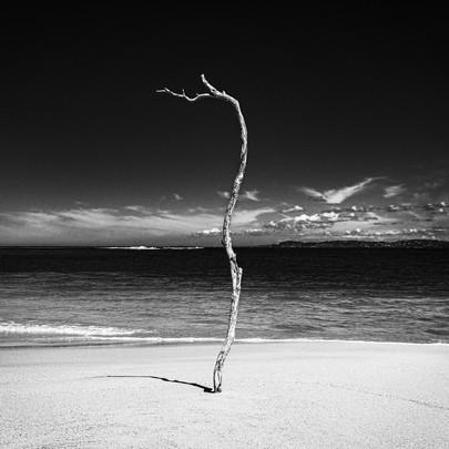 Territory-Tino-Sand-01.jpg