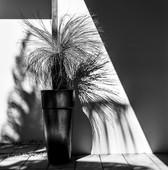 Tino-Sand-Unfolding-Memories-7.jpg