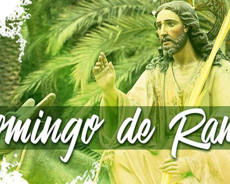 Jesus é reconhecido pelo povo como um grande Rei