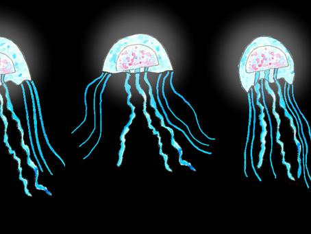 Jellyfish Animation